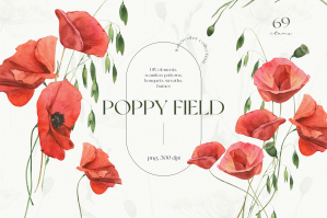 Poppies Field Watercolor Collection