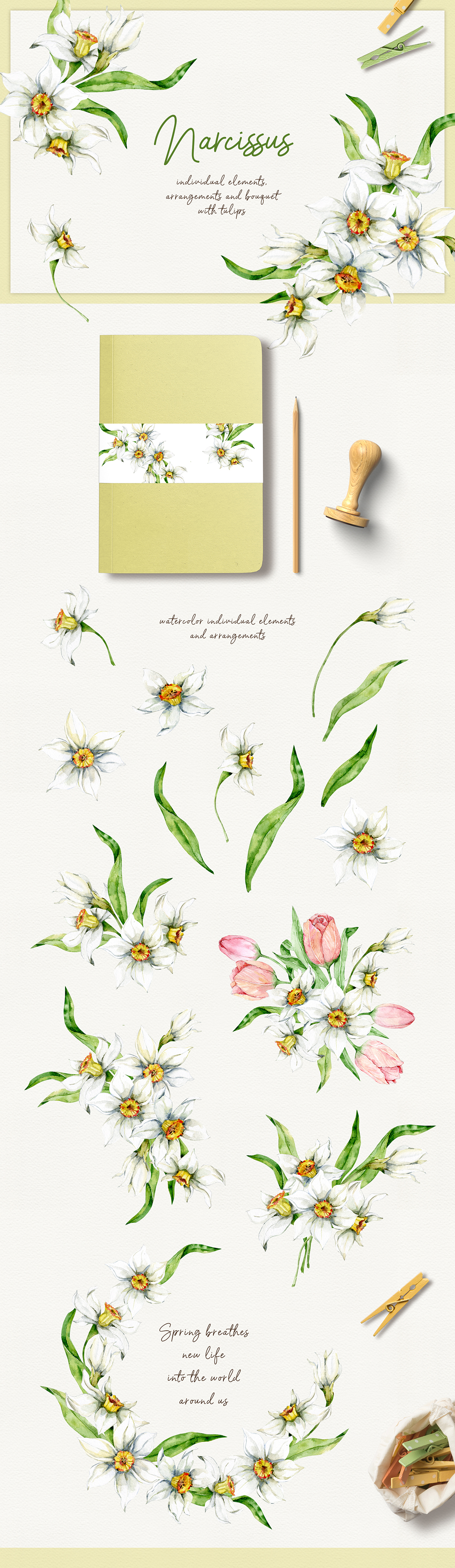 Spring Flowers Watercolor Clipart