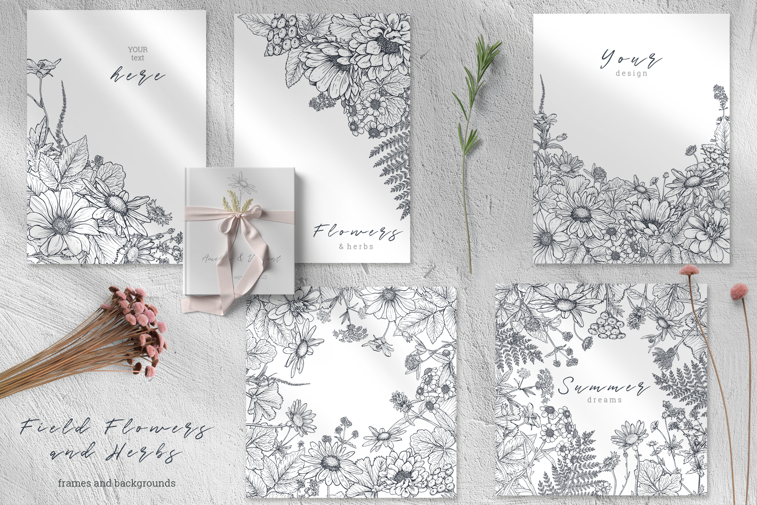 Summer Field Flowers Vector Collection