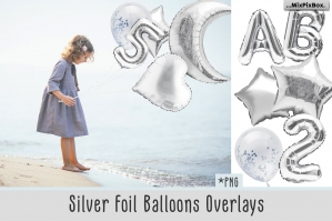 Silver Foil Balloons Photo Overlays