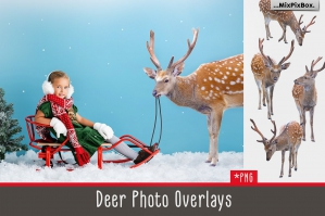 Deer Photo Overlays