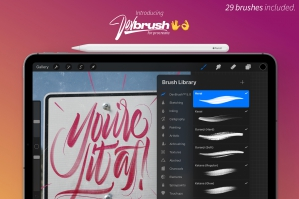 DevBrush 5.0 for Procreate