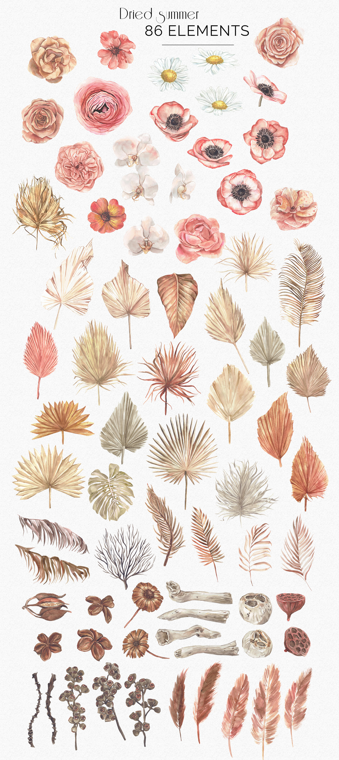 Dried Summer Bohemian Watercolor Collection