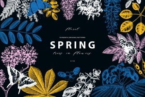 Spring Trees - Botanical Vectors Collection