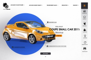 Coupe Small Car 2011