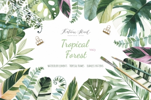 Tropical Forest Vol.3