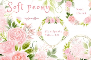 Soft Pink Peony Clipart