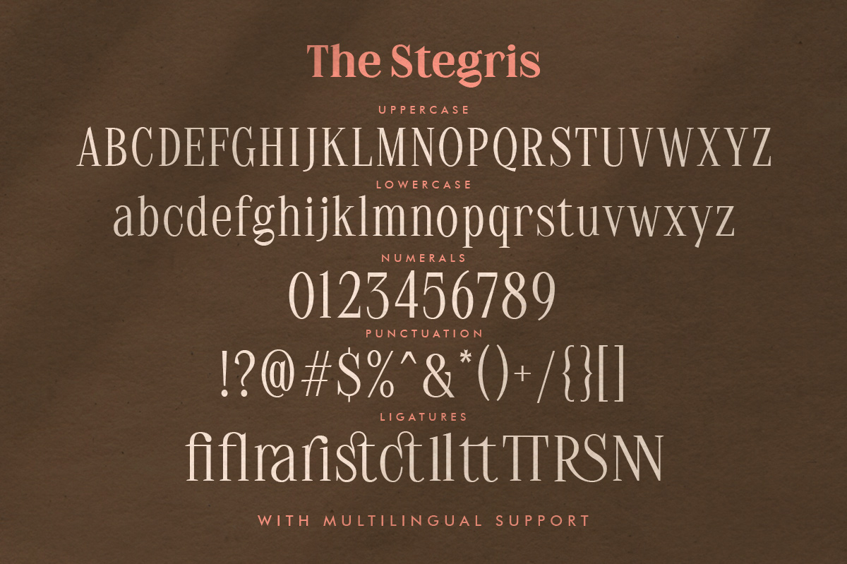 The Stegris Serif Family - 5 Weights