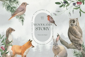 Woodland Story Watercolor Collection