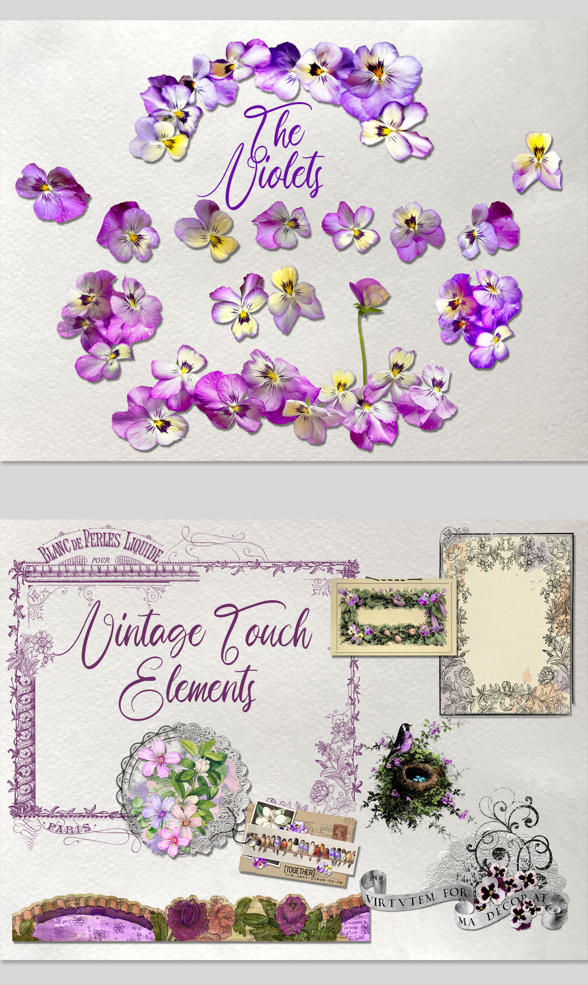 Garden Be Well: Very Violet and More