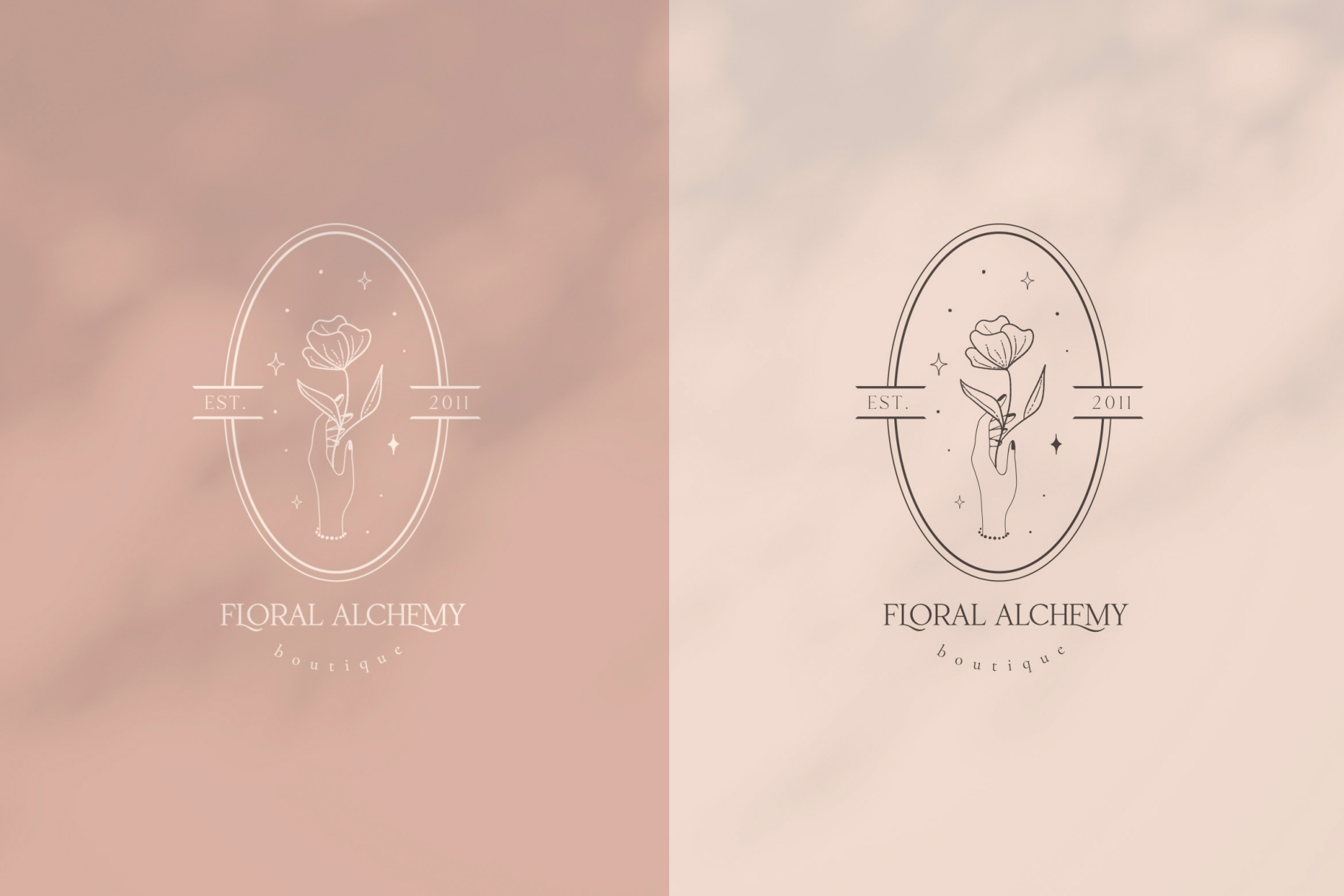 Pre-Made Logo Template and Packaging Branding Kit