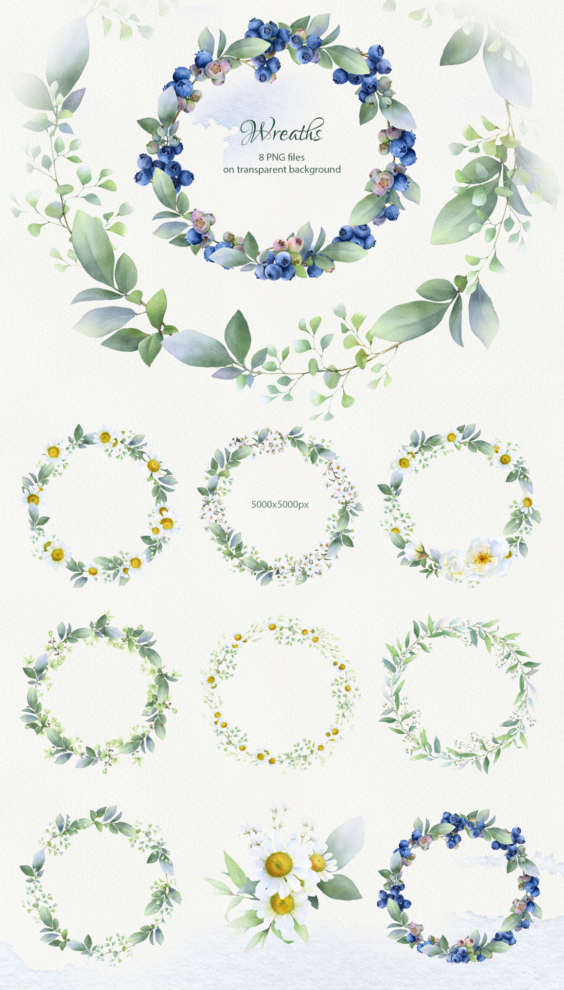 Sunny Summer Hand Drawn Watercolor Collection