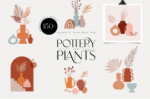 Pottery & Plants Collection