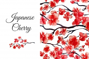 Japanese Cherry Collection