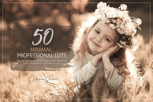50 Minimal Presets and LUTs Pack