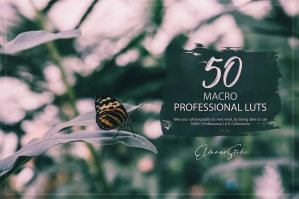 50 Macro Presets and LUTs Pack