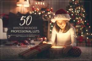 50 Winter Wonder Presets and LUTs Pack