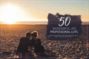 50 Wonderful Life Presets and LUTs Pack