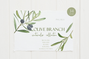 Olive Branch Watercolor Clipart
