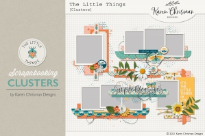 The Little Things Clusters