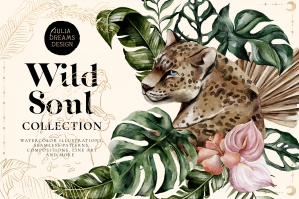 Wild Soul Collection