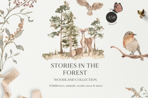 Stories in the Forest - Watercolor Woodland Animals Set