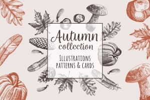 Autumn Hand Drawn Collection