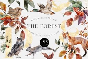 The Forest: Autumn Watercolour Collection