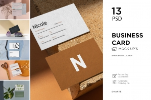 Business Card Mock-Up Shadows Collection
