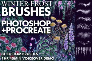 Winter Frost Brushes for Photoshop and Procreate