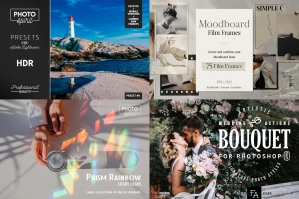 The Artist's Essential Photography Bundle