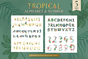 Tropical Alphabet & Number Watercolor