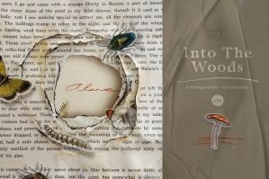 Into The Woods - Collection