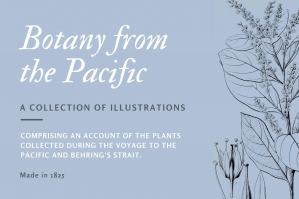Botany from the Pacific