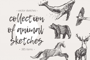 Huge Collection of Animal Drawings