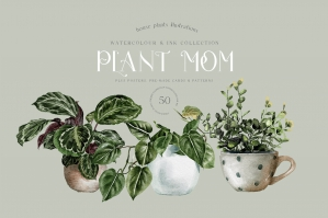 The House Plants Collection