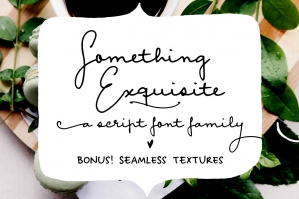 Something Exquisite Script Font and Extras